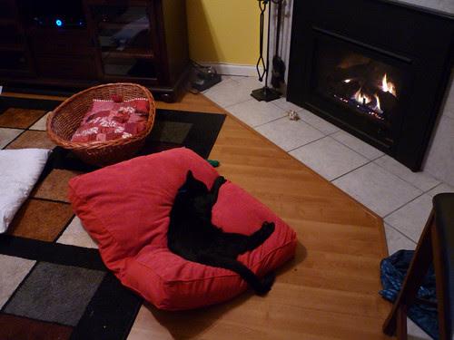 Buddah's new bed