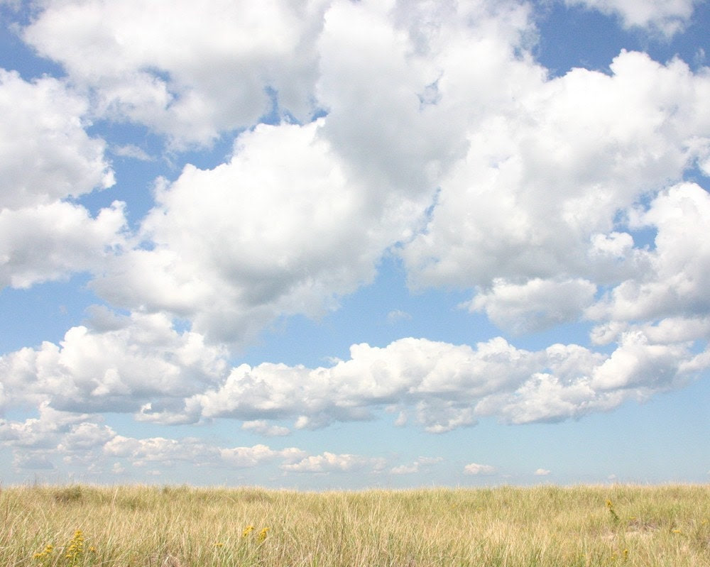 Meadow  8 x 10 Photograph Art Print Landscape Fields Summer Clouds Sky Grass - scarlettdesign