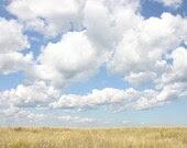 Meadow 8 x 10 Photograph Art Print Landscape Fields Summer Clouds Sky Grass - scarlettdesign