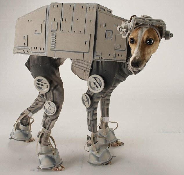 Anjing Dimodifikasi Jadi Robot Star Wars
