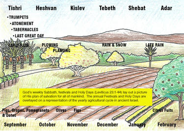 chart of the crops and months in Israel