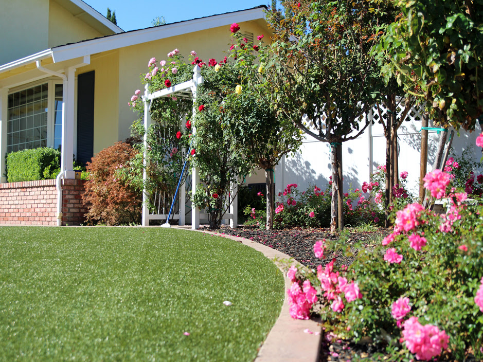 Grass Turf Queen Creek Arizona Landscape Design Front Yard Landscaping