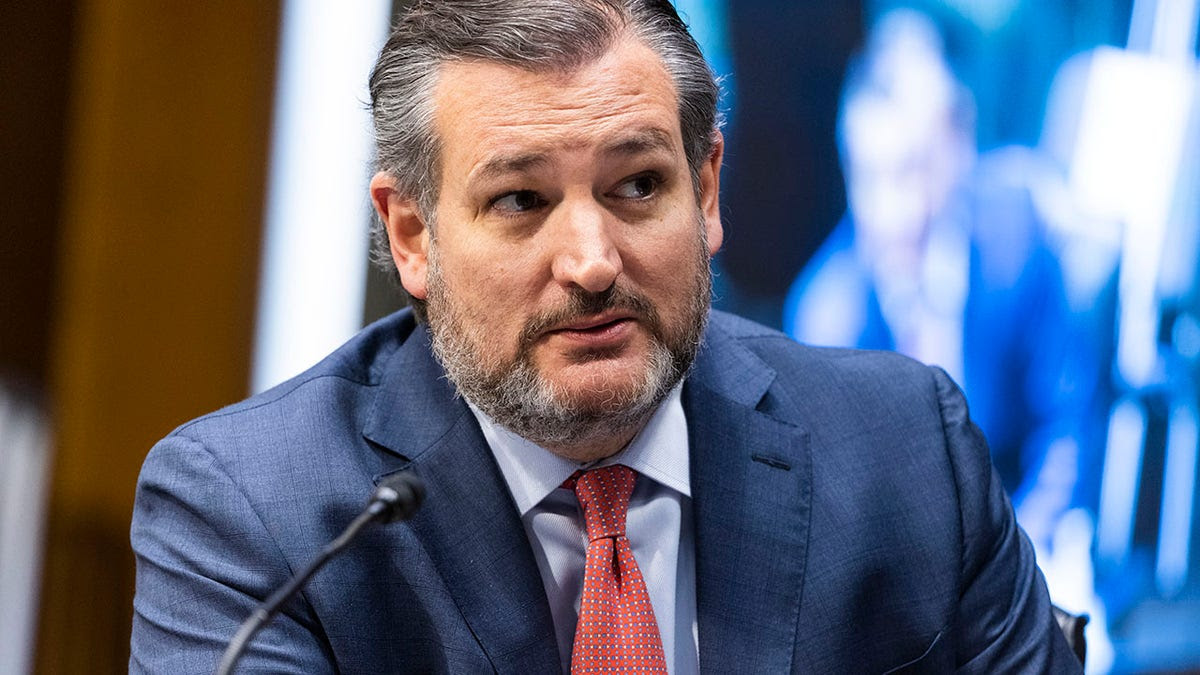 Cruz praises courage of US gymnasts testifying about FBI Larry Nassar investigation: 'System needs to change'