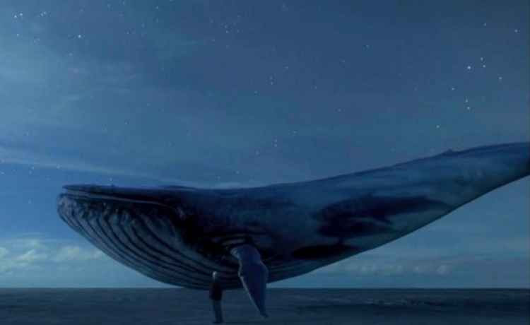 Resultado de imagem para jogo baleia azul baixar