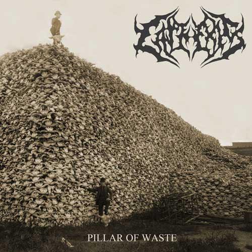 Cathexis - Pillar of Waste