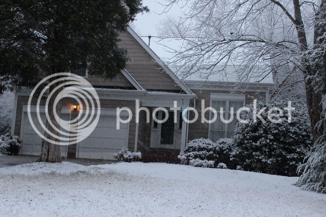 photo snow9_zps01718410.jpg