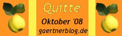 GKE_Oktober08_400x120