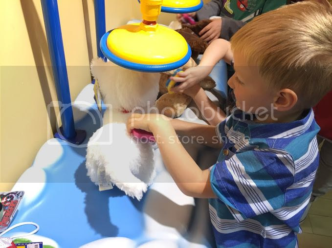 Grooming Promise Pets