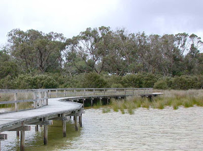 Boardwalk, Lake Clifton