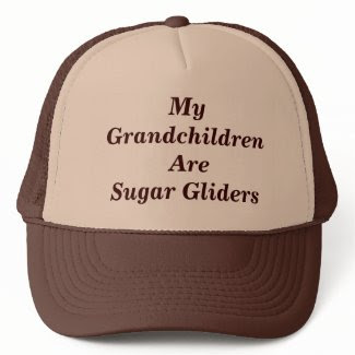 My Grandchildren Are Sugar Gliders Mesh Hats