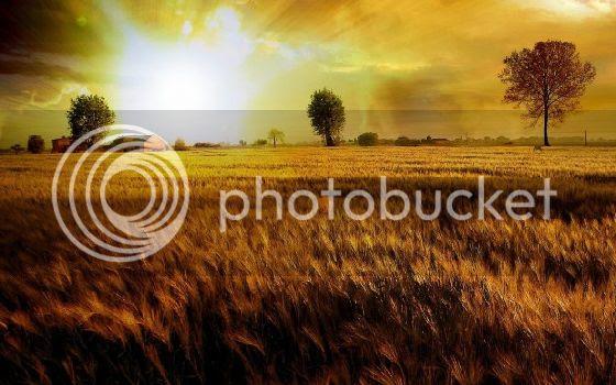 photo hd_wallpaper_1413-620x387.jpg