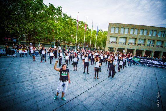 Funeral antitaurino en el Ayuntamiento de Logroño