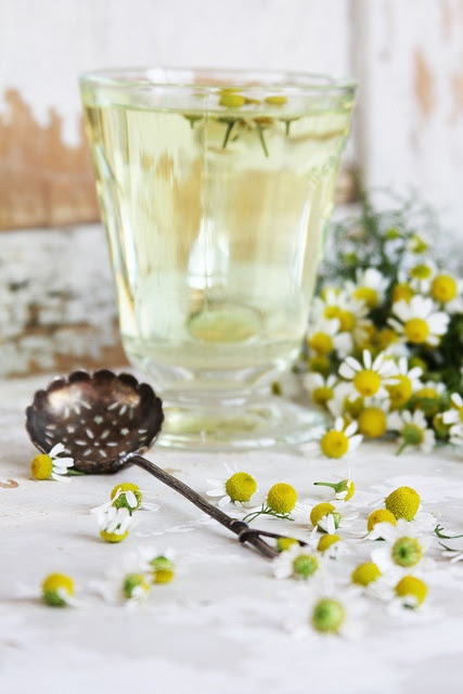 Camomille tea is wonderful remedy for sleep disorders such as insomnia. Simply make a chamomile tea 30 to 45 minutes before going to bed to treat sleeplessness.