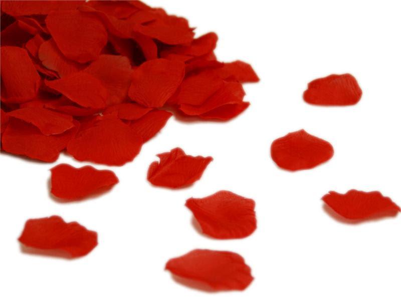 Resultado de imagen de oto petalos rojos