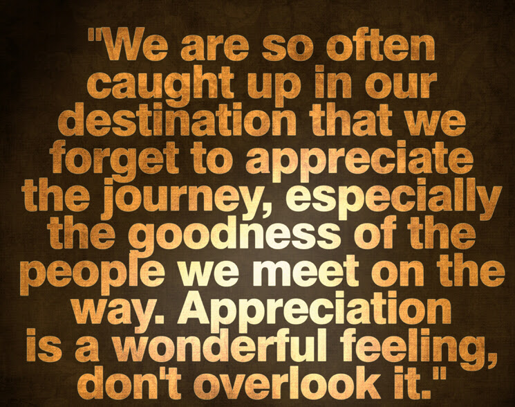 Quotes About Appreciating Each Other 31 Quotes