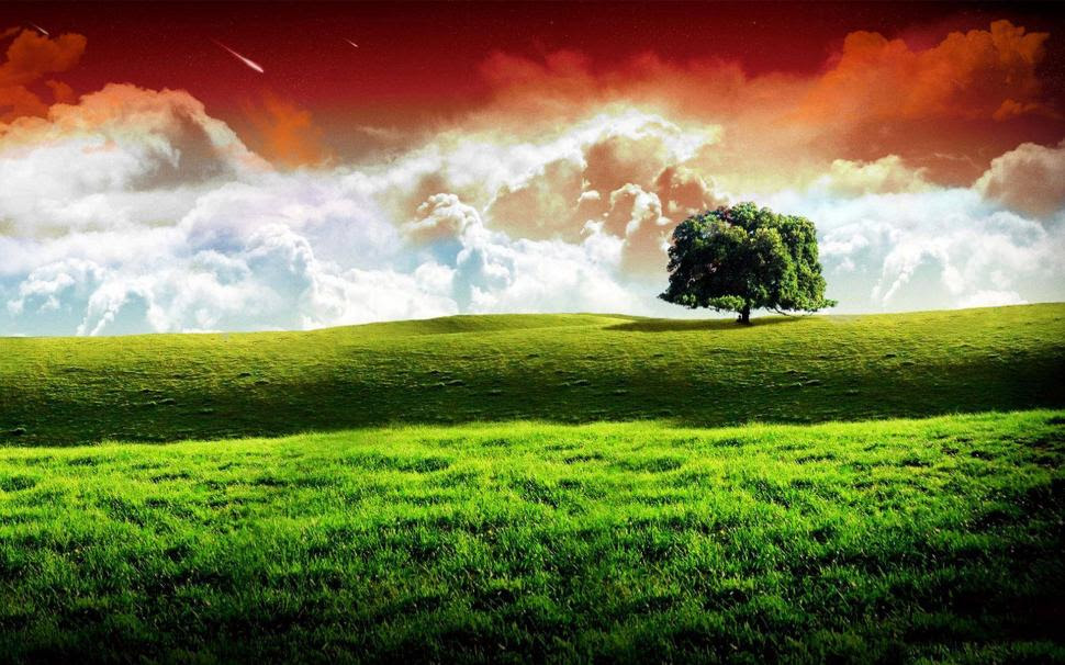 Independence Day Nature Picture Wallpaper Holidays Wallpaper Better