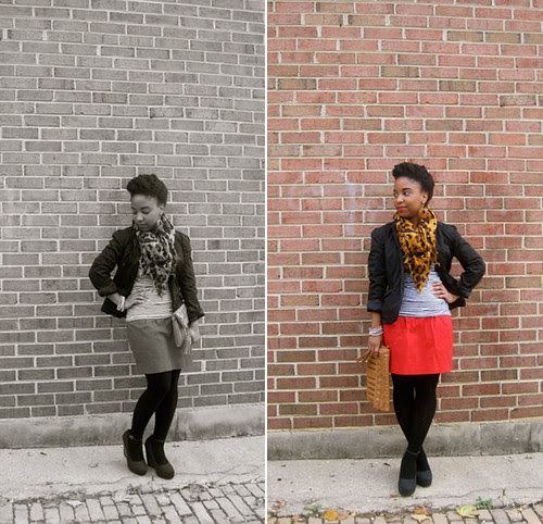 Red Leopard and Black