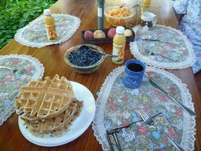 Waffles1.jpg (78162 bytes)