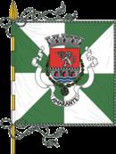 Bandeira de Amarante