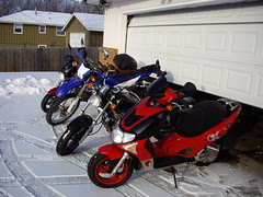The bikes before winterizing