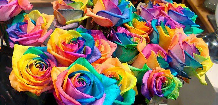 Lenguaje De Las Rosas