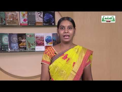 12th Office Management  Decision Making  Q&A  Part 1  Kalvi TV