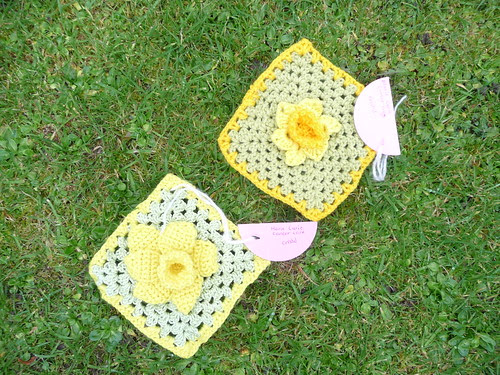 Cristal (RAV) Daffodil Squares 'Marie Curie Cancer Care' Challenge. Thank you!