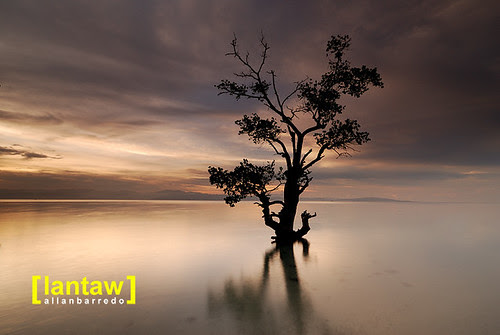 Maasim Serene Dawn