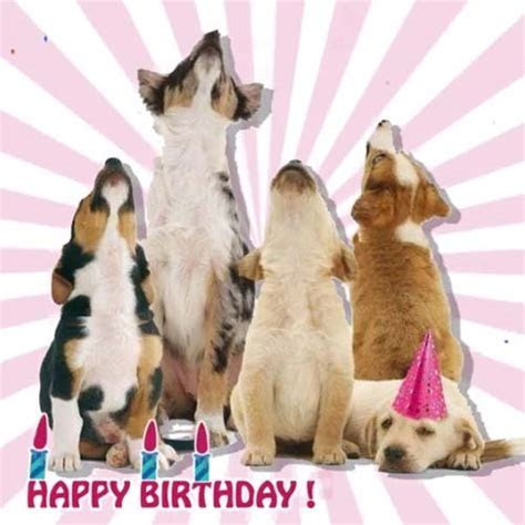 Dogs Are Singing For Your Birthday! Free Happy Birthday