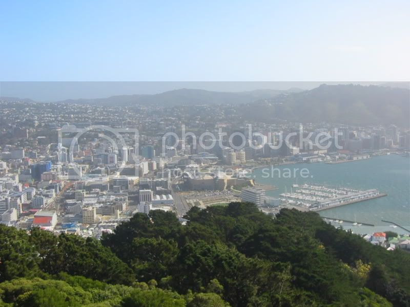 Looking out from Mt Vic #3