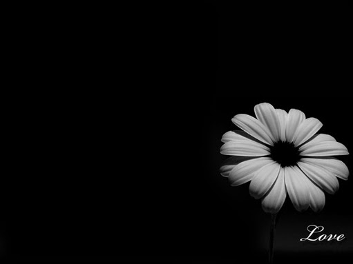 black and white desktop wallpaper designs