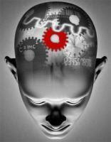 Aprendizaje por observacion - Curso Psicologia para Educadores | Curso Psicologia para Educadores | Scoop.it