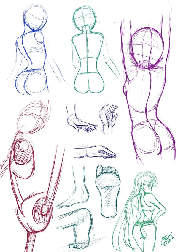 Female Body Structure Drawing At Getdrawings Com Free For