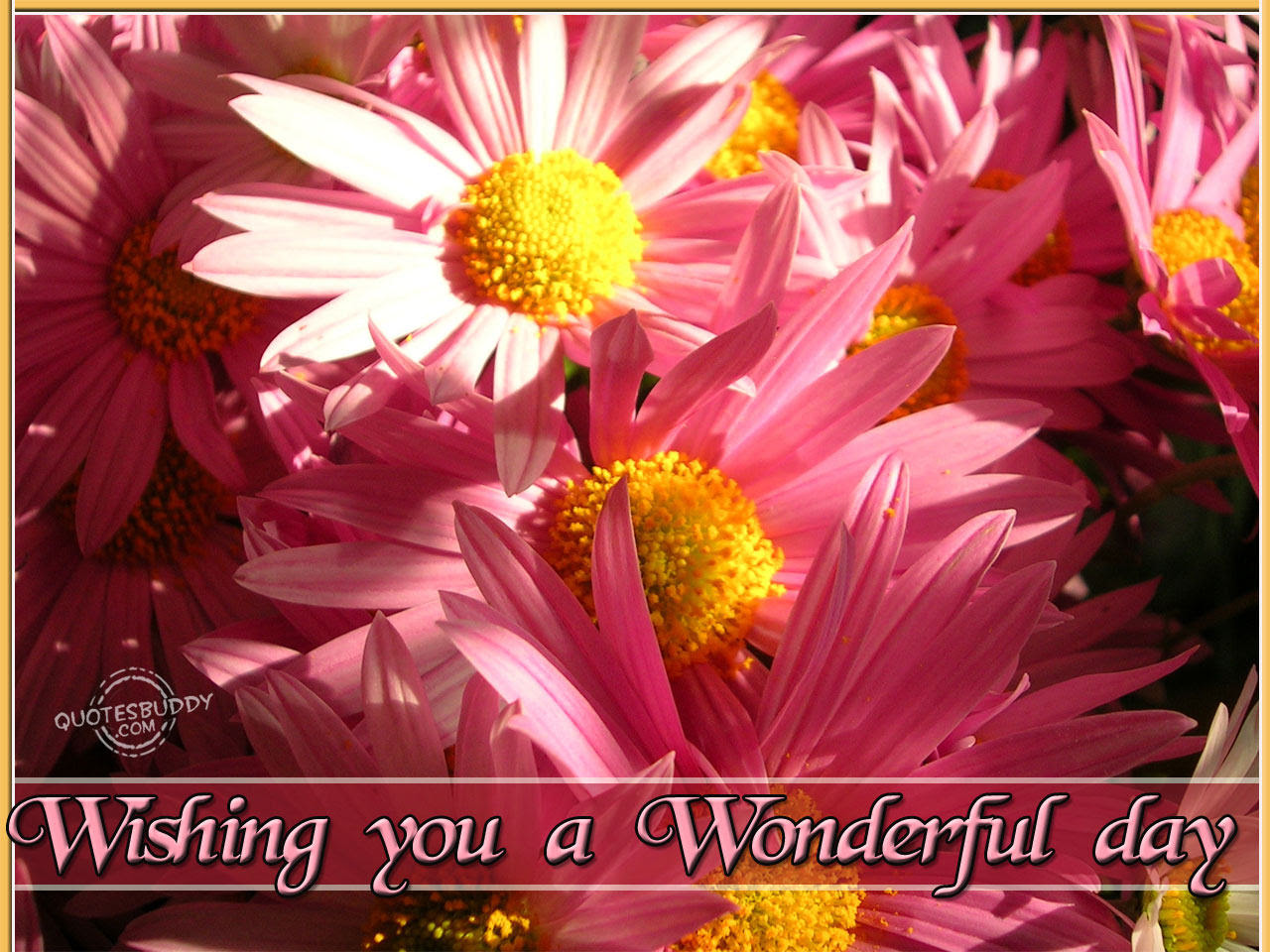Wishing You A Wonderful Day Good Day Quote Quotespicturescom