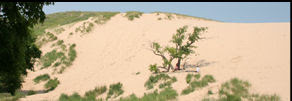 Sleeping Bear dune climb