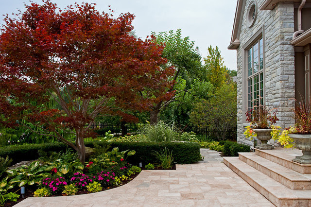 Landscape Design With Japanese Maple Home Dignity