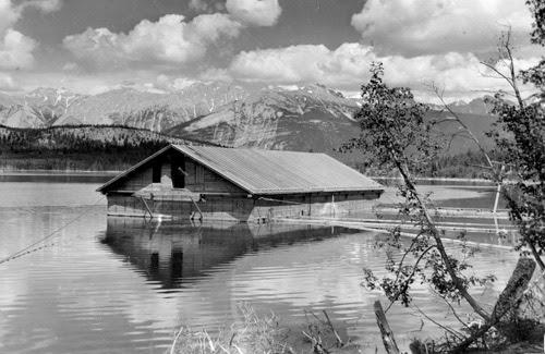 Resultado de imagen de patricia lake habakkuk