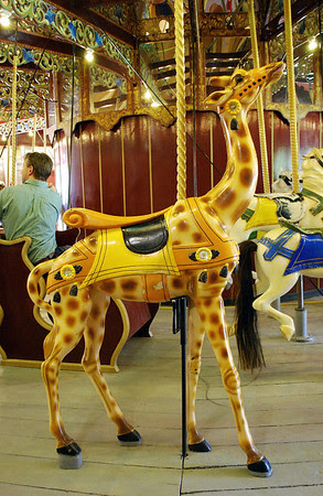 A giraffe on the Port Dalhousie Carousel.