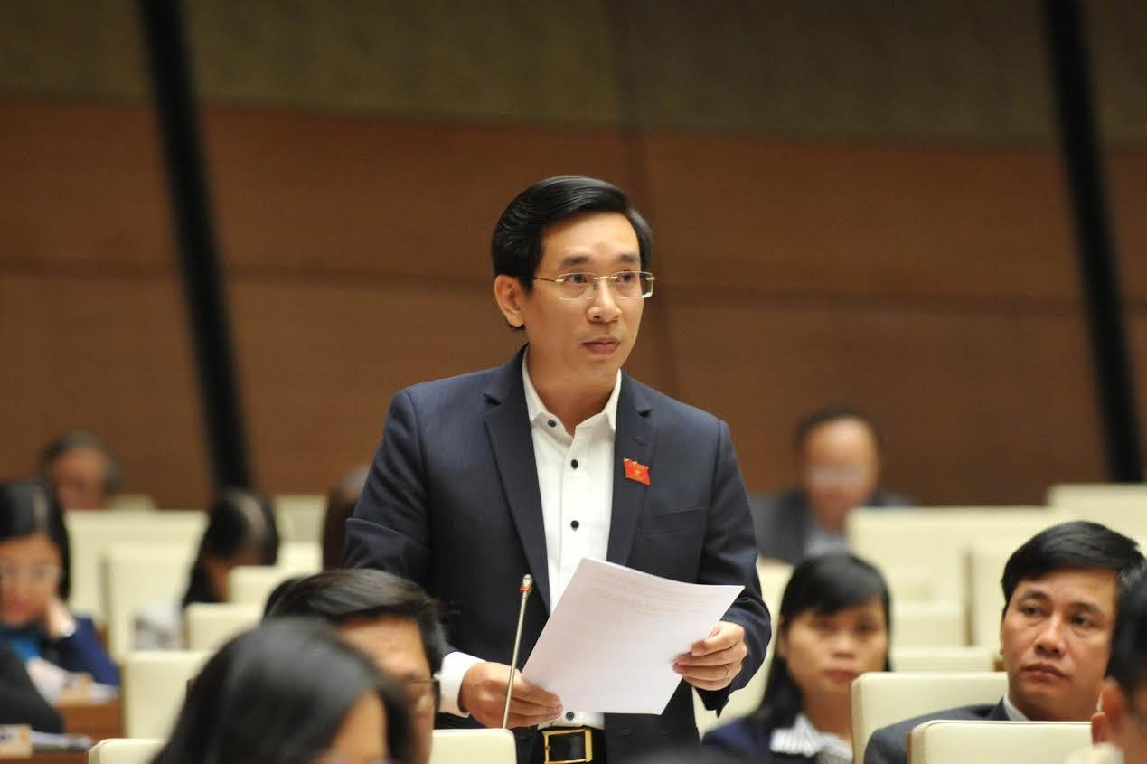 Đại biểu quốc hội, Nguyễn Văn Cảnh, ĐBQH, cáo quan về quê