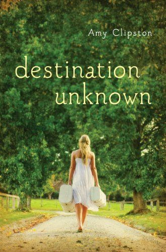 Destination Unknown by Amy Clipston, http://www.amazon.com/dp/B00DL1RPBW/ref=cm_sw_r_pi_dp_jBXXsb0SYQWQG