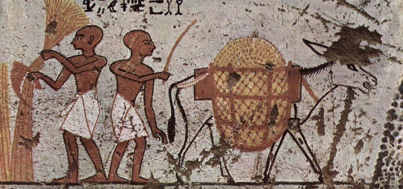 ezel op egyptisch schilderij