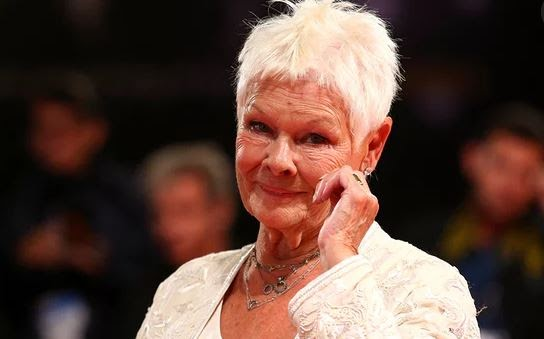 To The Married And To Those Broken In Heart, Do Not Give Up! - Dame Judi Dench the 82 year old woman who finds love again