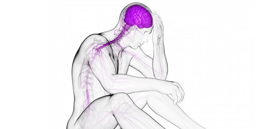 La dépression à été liée à une inflammation de certaines régions du cerveau. cSKU / Science Photo Library