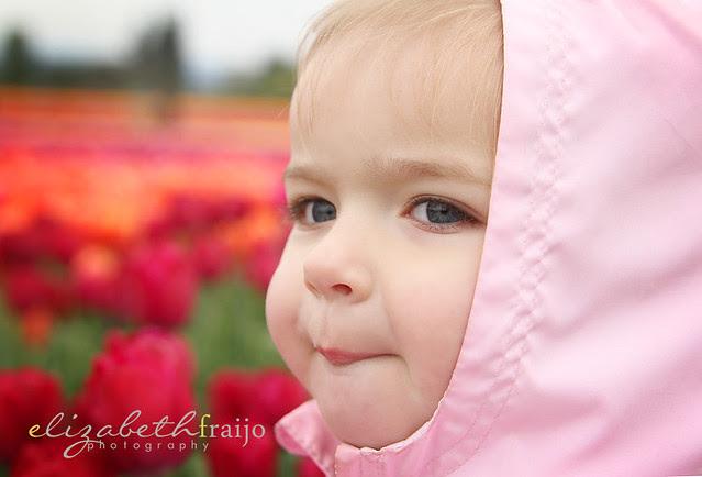 Tulips04W