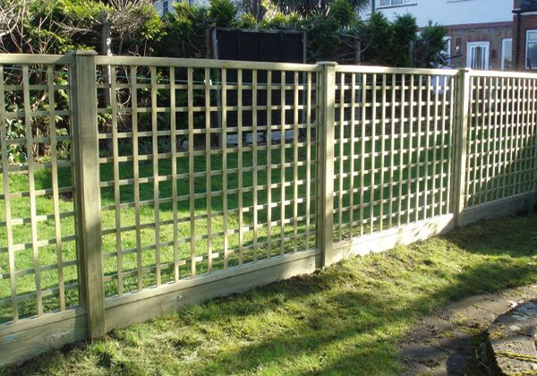 Trellis Fence Ideas