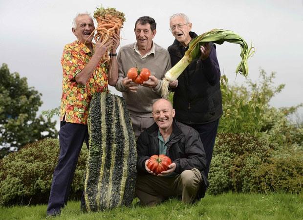 A partir da esquerda, Ian Neale com a abobrinha e cenoura gigantes; Graham Tranter, de  Bridgnorth, com tomate que ficou em quarto;, Joe Atherton, de Mansfield, que ganhou o primeiro lugar com seu tomate gigante;e  Graham Walford, de Bridgnorth, exibe alho-porro gigante (Foto: Nigel Roddis/Reuters)