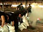 Polícia Civil incinera 300 quilos de droga (Reprodução/Rede Amazônica Acre)