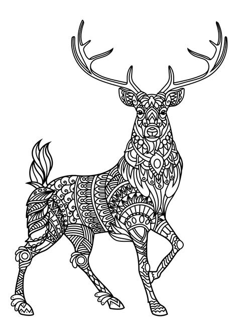 animal coloring pages  coloring animals deer