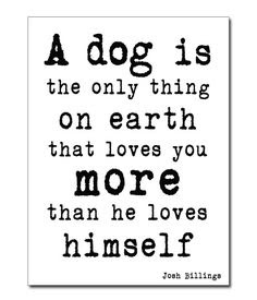 A dog is the only thing