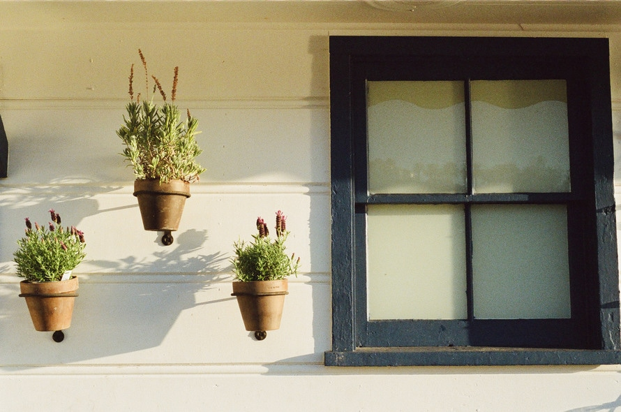 house-window-flowerpots-large.jpg